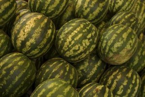 Buy a seedless watermelon to cut down your preparation time.