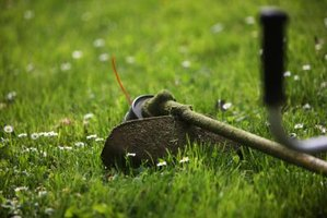 Restringing a weed trimmer is simple and cost-effective.