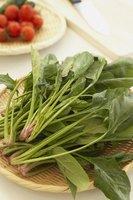 Leafy greens like spinach are rich in vitamins A and C.