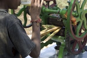 A youth drinking freshly pressed cane juice in Equador.