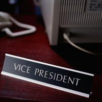 A vice-president in a non-profit organization supports the organization's president.