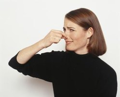 Unpleasant odors will turn your home into a stinky mess.