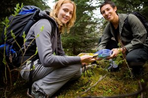 Geocaches can be stowed in almost anything that's tough enough to withstand outdoor conditions.