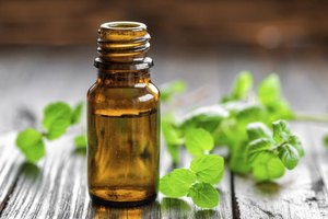 Peppermint oil has many uses in and around the home.