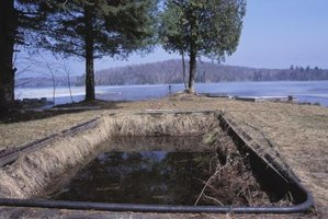 An old pool may support waterborne pests.