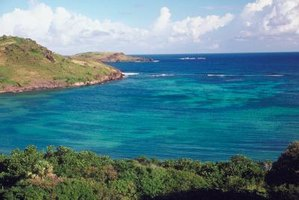 The island is one landform that characterizes the geography of the Caribbean.