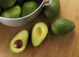 Grow avocados even in cold climates.
