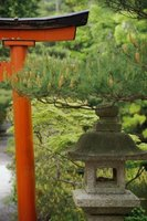 Simplicity is the hallmark of Japanese garden design.