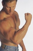 You should increase overall muscle mass to get bigger arms.