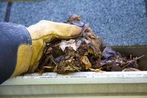 Gutter guards will help keep your rain gutters free of this kind of messy debris.