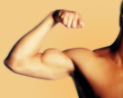 Your biceps are only one of several elbow muscles.