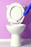 Bacteria, minerals and organisms all can result in toilet bowl stains.
