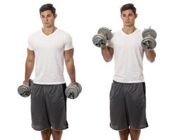 With hammer curls, your wrists are kept in a neutral position.