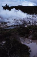 The development of geothermal areas can destroy fragile habitats.
