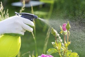 Wear chemical-resistant gloves when spraying Tempo insecticide.