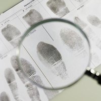 Detectives can gather a lot of information from the tiniest details.