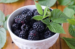 Each blackberry is a cluster of smaller fruits, known as a drupelet.