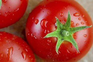 Lycopene is responsible for the red color of tomatoes.