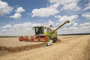 A large harvester in a wheat field.