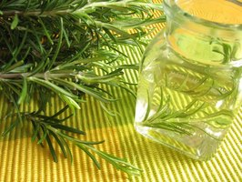 Close-up of vinegar water and rosemary plant