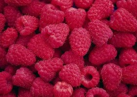 Berries are healthy and delicious, but prone to mold.