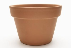 Plain terra cotta pots with smooth surfaces are ideal for decorating.