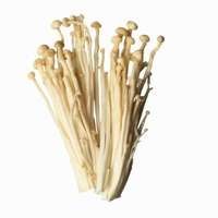 Enoki mushrooms grow tall and thin from plastic bottles.
