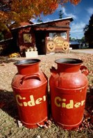 You can use any pasteurized cider to make hard cider.