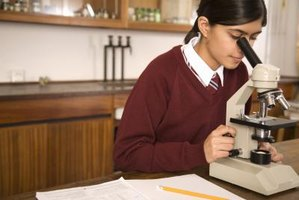 How to Calculate the Magnification of Dissecting Microscopes