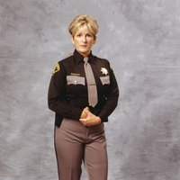A sheriff serves her entire county as the highest ranking law enforcement officer.