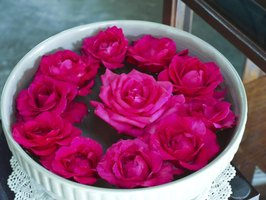Pink rose blooms floating in a white ceramic decorative bowl.
