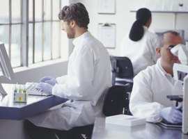 Nuclear physicists working in lab.