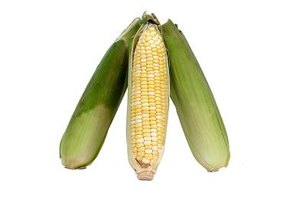 Husks help insulate your corn on the cob from freezer damage.