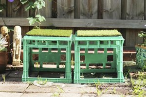 Repurposed milk crates become backyard furniture.