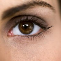 Strong lashes define the eyes and make them appear larger.