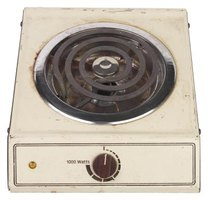 Portable hot plates usually run on 110 volts.