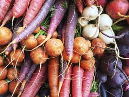 Most root vegetables produce best in fall or winter gardens.