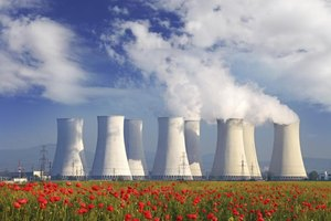 Cooling towers behind a flower field.