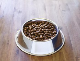 A bowl of dog food on a wood floor.