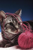 Felines and yarn aren't as compatible as your kitty wants you to believe.