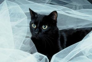 Tulle is a sheer fabric.
