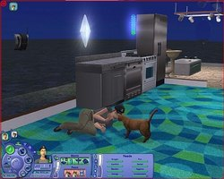Get a Pet for your Sim in The Sims 2