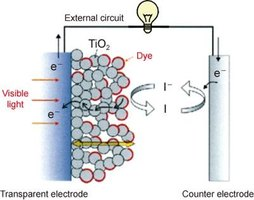 Operation mechanism of a dye-sensitized solar cell