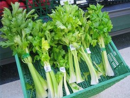 Nutritional Value of Celery
