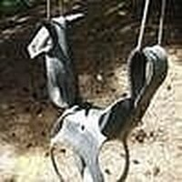 The Horse Tire Swing