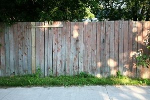 Staining a wood fence will protect it and prevent discoloration.