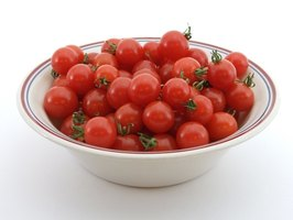 The tumbler tomato plant produces up to 6 lbs. of juicy-red cherry tomatoes.