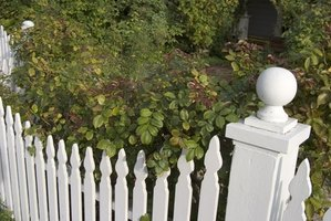 The picket fence is a type of front yard fencing