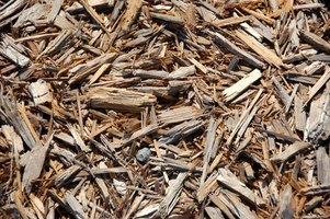 Save your wood scraps--use them for mulch.
