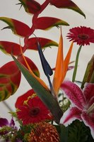 You can make a modern flower arrangement using a few tips.